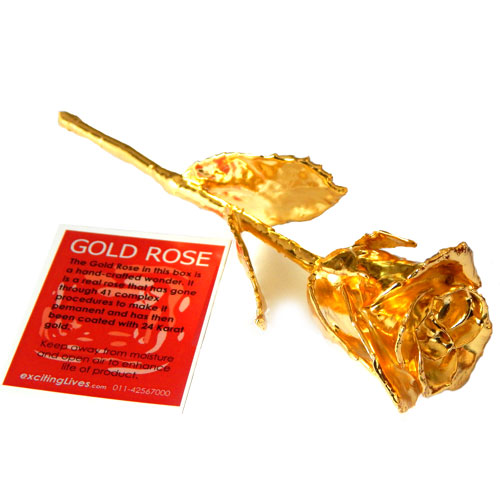 Wedding Gift Ideas For Brother And Sister In Law India : Gold Rose - gold plated rose - Rs.950 : Gifts ideas in India