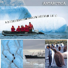 The Antarctica Adventure