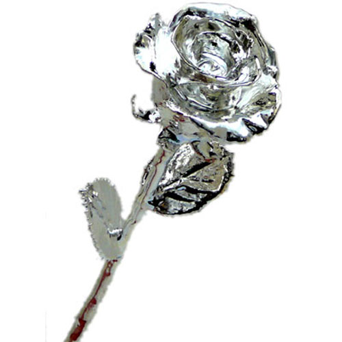 Silver Rose 11 Inches