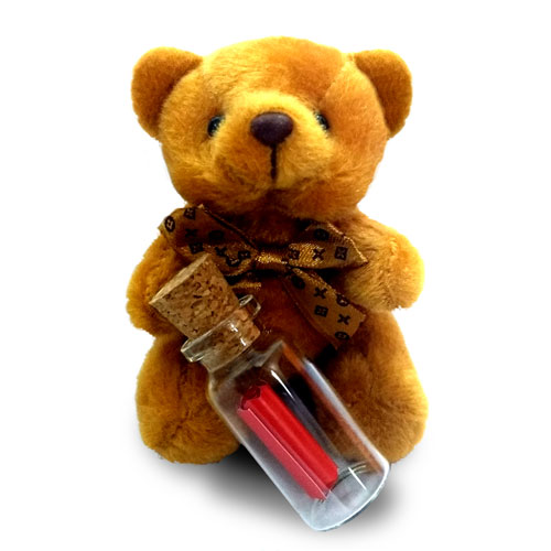 Valentines Day Teddy With Message Bottle