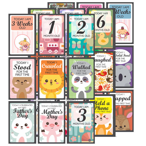 Baby Milestone Cards Set